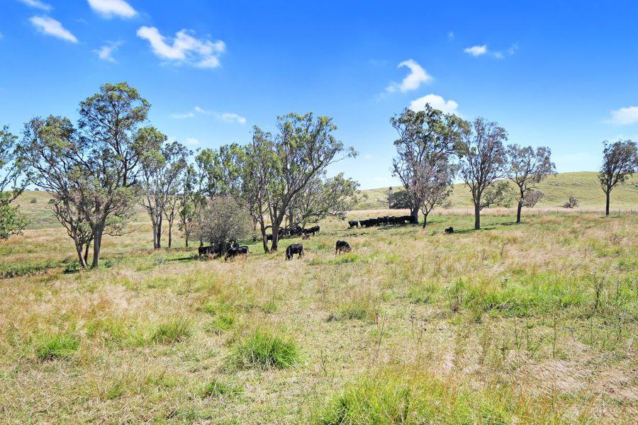 47a Bryans Gap Road, Tenterfield NSW 2372, Image 1