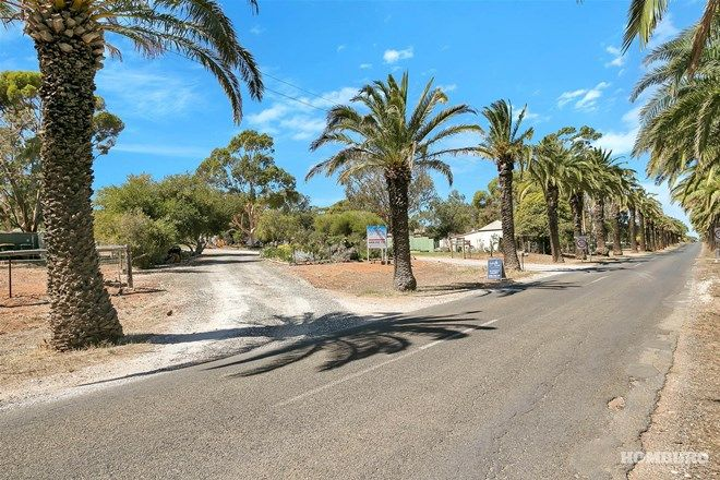 Picture of 675 Seppeltsfield Road, SEPPELTSFIELD SA 5355
