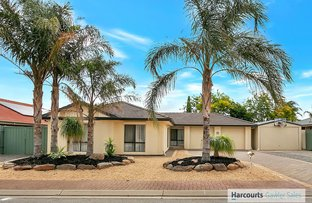 Picture of 7 Brunswick Terrace, Blakeview SA 5114