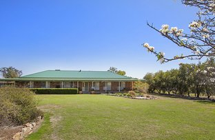 Picture of 5 Cameron Ave, Tamworth NSW 2340