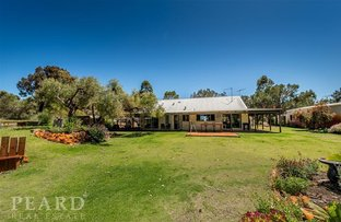 19 Kangaroo Place, Woodridge WA 6041