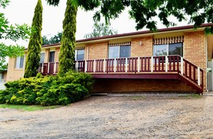 Picture of 43 Booral Avenue, Tumut NSW 2720