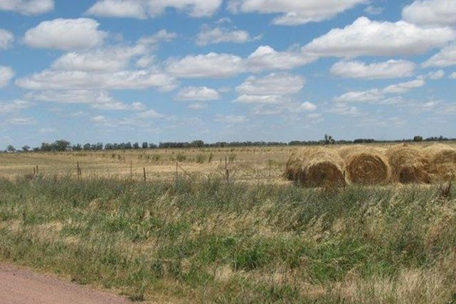 Picture of Lot 144, Farm 406 Saunderson Road, LEETON NSW 2705