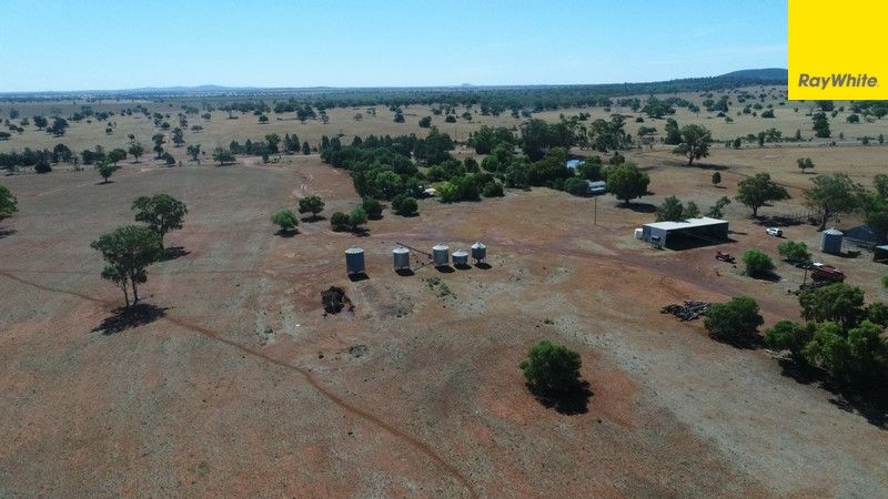 The Ranch Grassmere Road, Condobolin NSW 2877, Image 1
