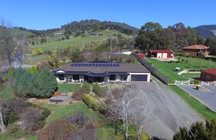 Picture of 6 Fingerboard Hill, Myrtleford VIC 3737