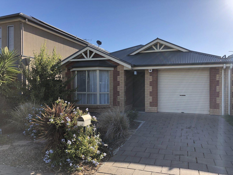 53 Dumfries Avenue, Northfield SA 5085, Image 0