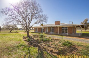 Picture of 6L Whitewood Road, Dubbo NSW 2830