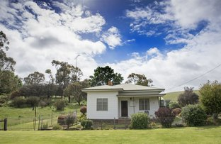 Picture of 23 Lower Glenorchy Road, Merino VIC 3310