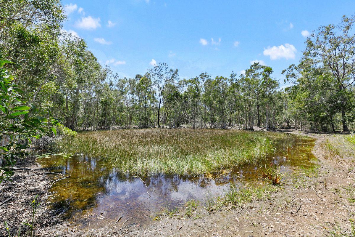 199 Moorabinda Drive, Sunshine Acres QLD 4655, Image 1