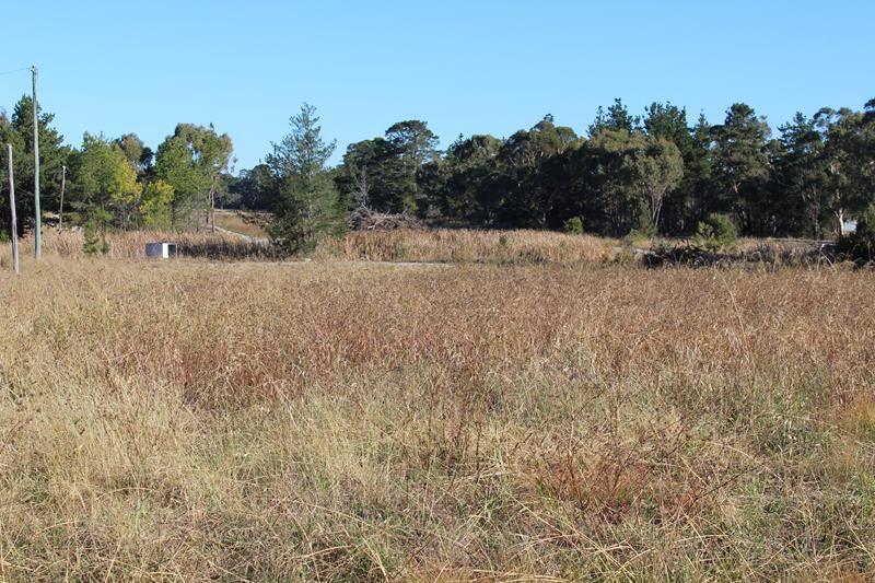 Lot 147 Watson Road, Cottonvale QLD 4375, Image 2