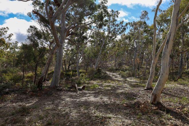 Picture of 295 Wolgon Road, OALLEN NSW 2580