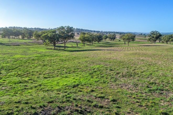 Picture of 9091 Mitchell Highway, WELLINGTON NSW 2820