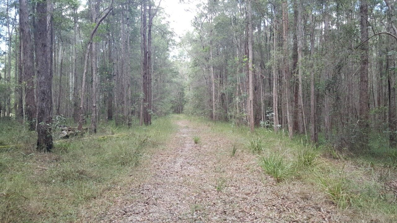 Lot 2, 100 Black Pinch Road, Pomona QLD 4568, Image 2