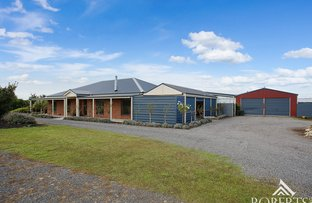Picture of 1203 Princes Highway, Killarney VIC 3283