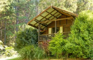 Picture of 12 Dudley Street, Bellingen NSW 2454