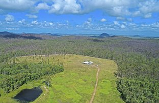 Picture of 223 Lake Mary Road, Cobraball QLD 4703