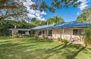 Picture of 6 Remnant Drive, Clunes NSW 2480