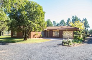 Picture of 16 Butler Drive, Gilgandra NSW 2827