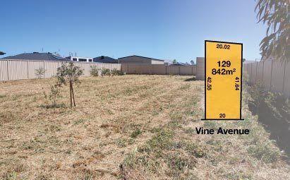 42 Vine Avenue, Horsham VIC 3400, Image 0