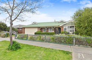 Picture of 29 Paramount Crescent, St Albans Park VIC 3219