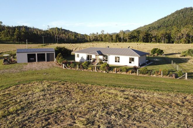 Picture of 242 McFauls Road, MOUNT MARTIN QLD 4754