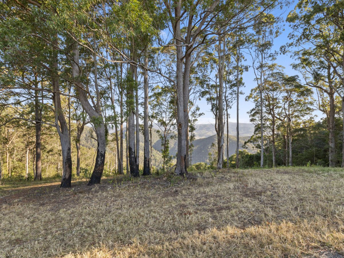 Delicia Road, Mapleton QLD 4560, Image 2