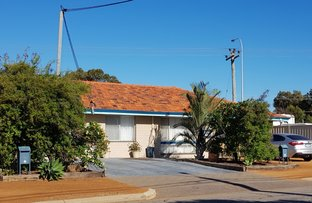 Picture of 55B Lawley Street, Spalding WA 6530