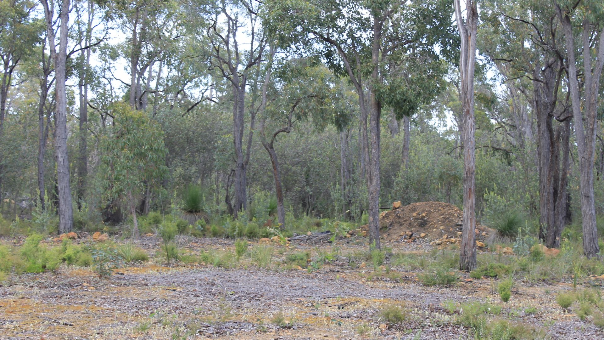1815 Wedgetail Circle, Parkerville WA 6081, Image 2