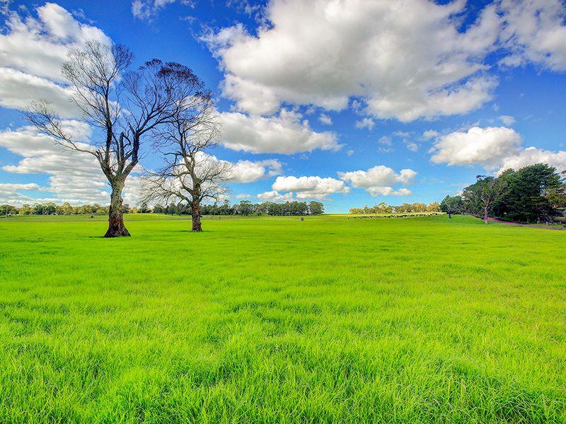 Glenwood Illawarra Highway, Moss Vale NSW 2577, Image 2