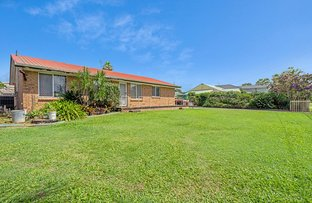 Picture of 37 Larch Street, Tallebudgera QLD 4228