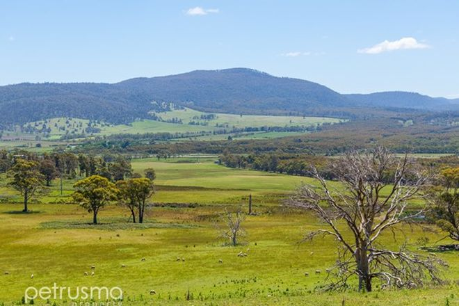 Picture of Lot 1 Phipps Road, RUNNYMEDE TAS 7190