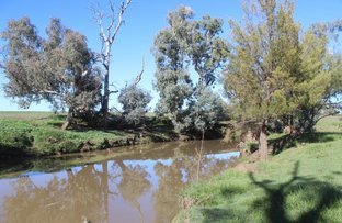 Picture of Tanah Merah, Dunedoo NSW 2844