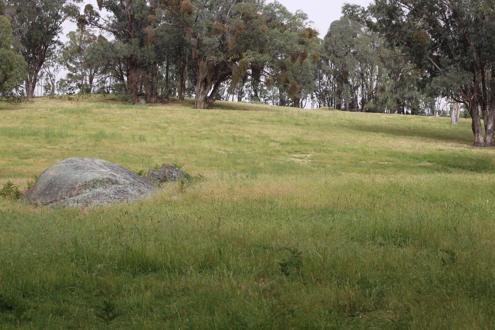 1126 Munderoo Road, Munderoo NSW 2653, Image 2