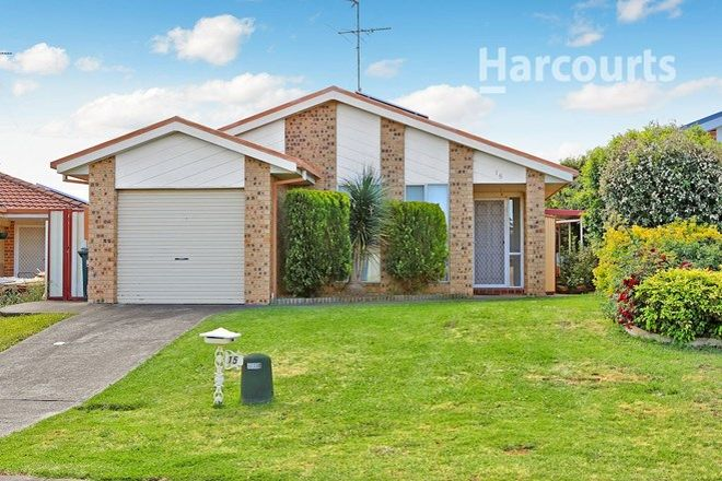Picture of 15 Alyan Place, ST HELENS PARK NSW 2560