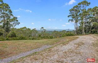 Picture of 27891 Lyell Highway, Strahan TAS 7468