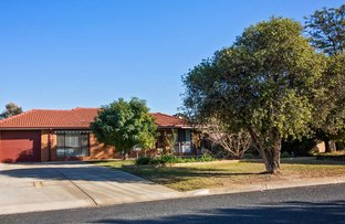 Picture of 3 Dodwell Crescent, Forest Hill NSW 2651