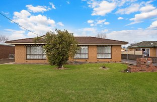 Picture of 4 Cobham Street, Terang VIC 3264