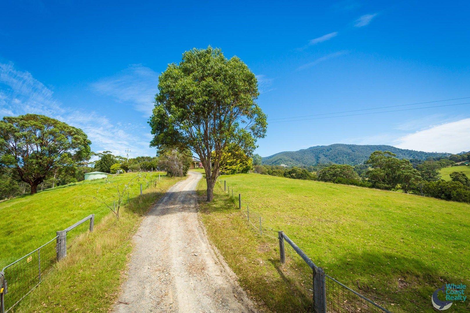 8217 Princes Highway, Central Tilba NSW 2546, Image 0