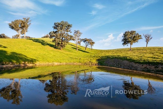 Picture of 1231 Howes Creek Road, MANSFIELD VIC 3722