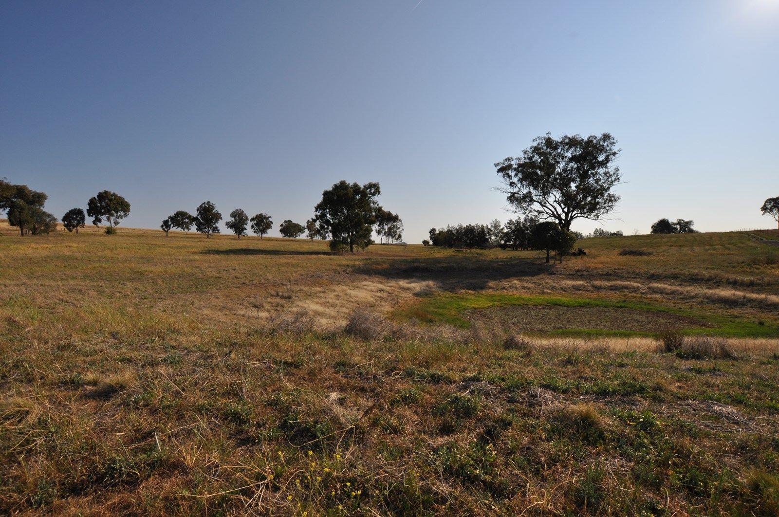 18B Impala Estate Road, Tamworth NSW 2340, Image 2