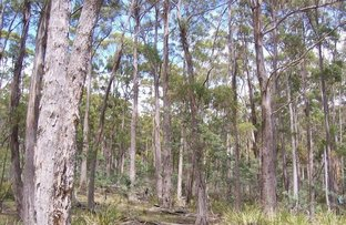 Picture of Lot 1 Mill Road, Nugent TAS 7172