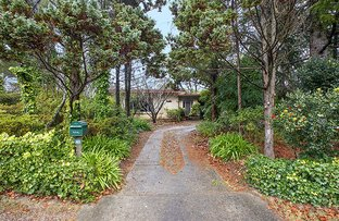 Picture of 43 Evans Lookout, Blackheath NSW 2785