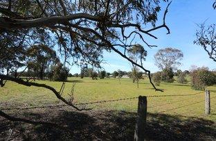 Picture of 20 Du Bourg Road, Bowenvale VIC 3465