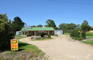 Picture of 20 Border Road, Applethorpe QLD 4378
