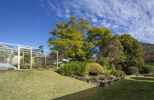 Picture of 173 Mulligans Lane, Kundibakh NSW 2429