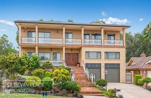 17 Bevan Place, Carlingford NSW 2118
