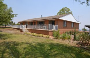 Picture of 2391 Castlereagh Highway, Gulgong NSW 2852