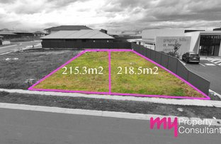 Picture of 53 Minnamurra Drive, Gregory Hills NSW 2557