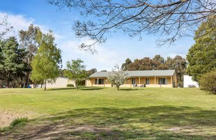 Picture of 3 Crystal Court, Ross Creek VIC 3351