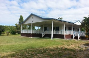 Picture of 295 Cowley Beach Rd, Cowley QLD 4871